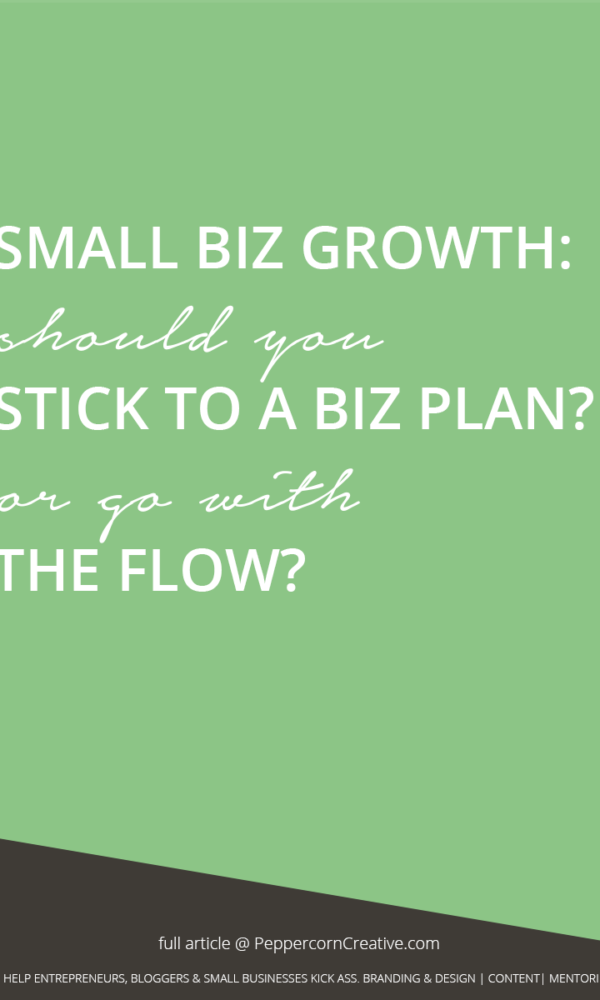 Small business growth - Is a business plan worth it? Or go with the flow? - PeppercornCreative.com | website design agency and blog & business mentor in Vancouver BC